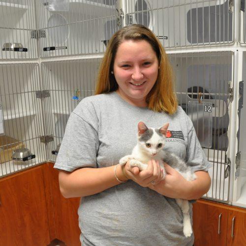 adult volunteer holding black and gray kitten