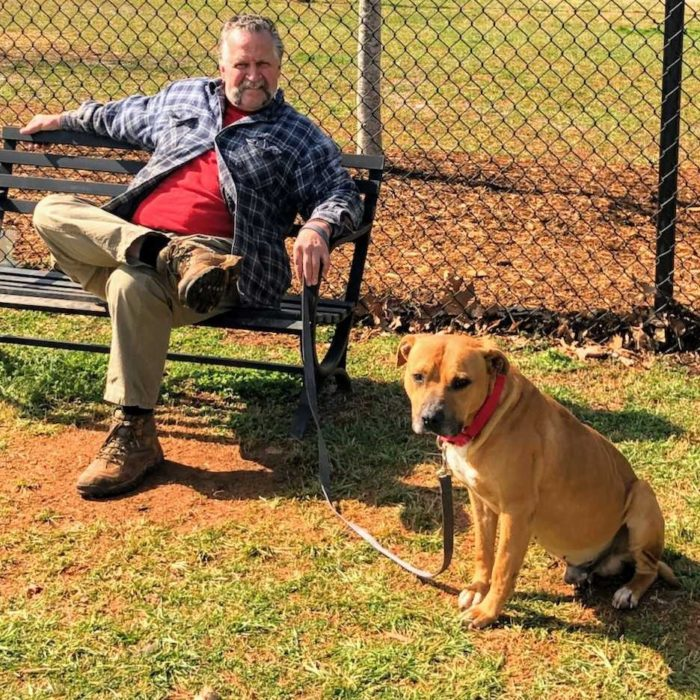 adult volunteer sitting on bench and brown dog sits next to him