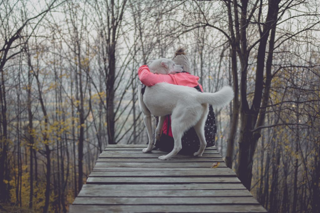 Mujer abrazando a un gran perro blanco en el muelle en el bosque