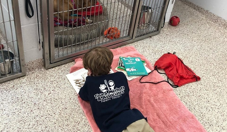 boy laying in front of dog kennel reading him a story